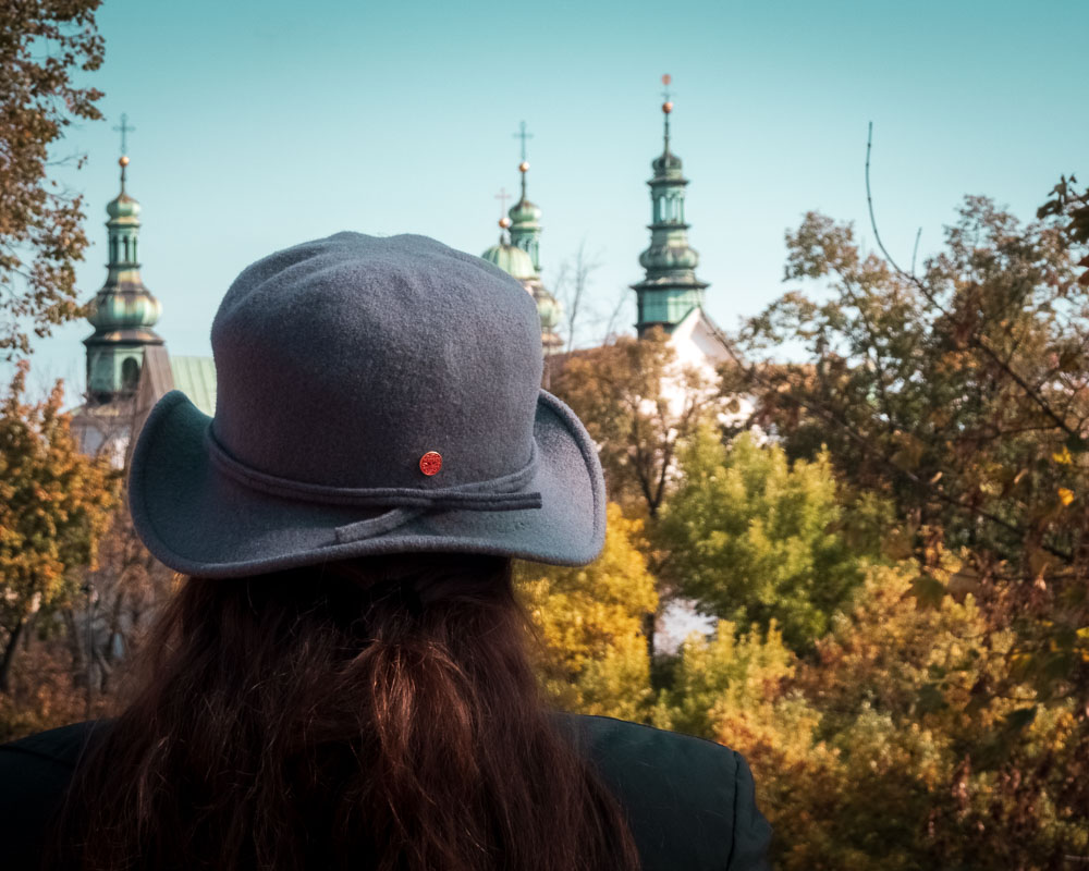 View from Wawel Hill